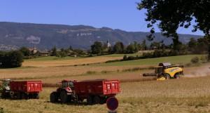 église de Thairy et tracteurs